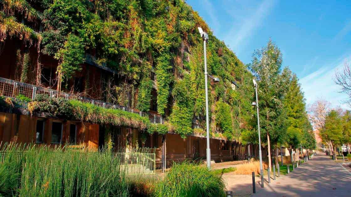Arquitetura Sustentável: Arquitetura verde ou sustentável