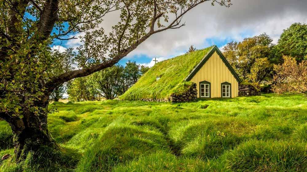 Tipos de Telhados: Telhado verde
